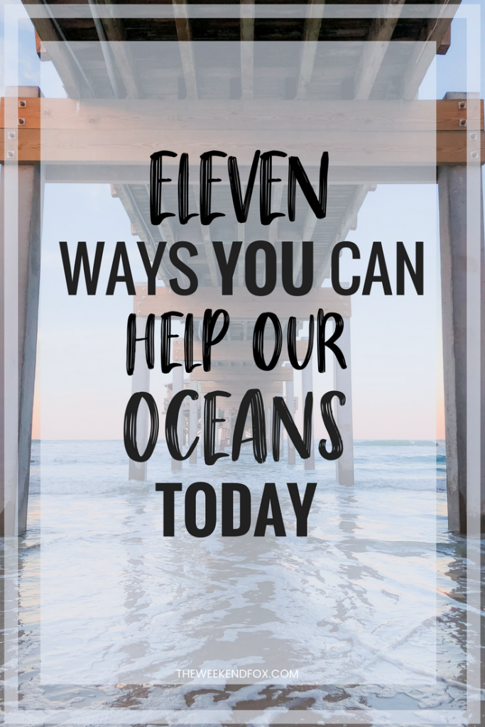 Help Our Oceans, Save Our Oceans, Surfrider, Florida, Beaches, Things to do to help our oceans, Ways to make a difference, Protect Our Oceans, How to help our environment, Easy changes to make, #ocean #floridablog #makeadifference